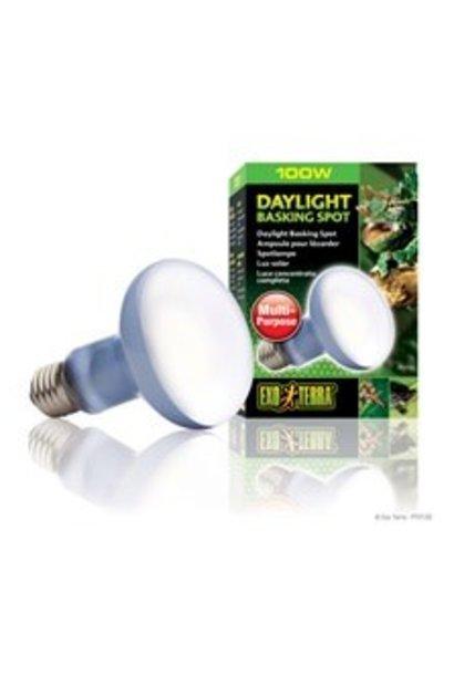 Exo Terra Daylight Basking Spot Lamp, 100W