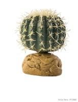 Exo Terra Desert Plant - Barrel Cactus - Small-1