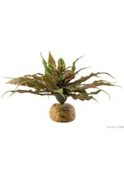Exo Terra Star Cactus Terrarium Plant