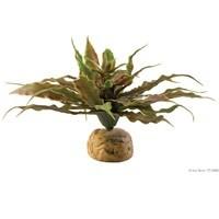 Exo Terra Star Cactus Terrarium Plant-1