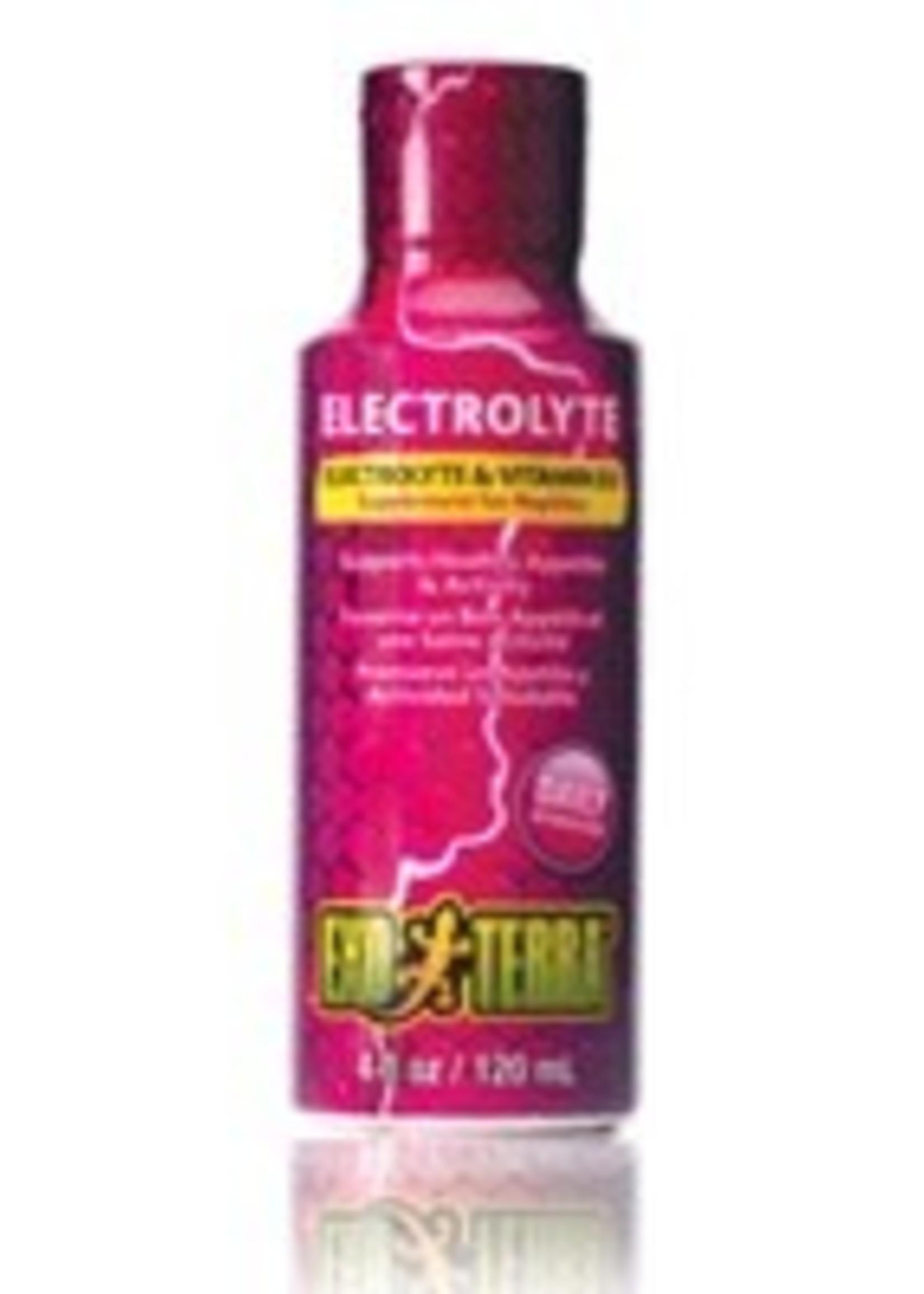EX Electrolyte Supplement, 120ml