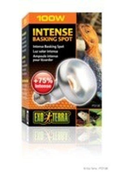 Exo Terra Intense Basking Spot Lamp, 100W