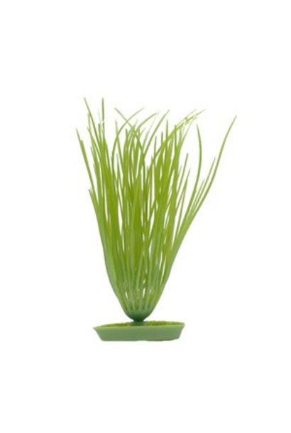 Marina AquaScaper 12.5cm Hairgrass-V