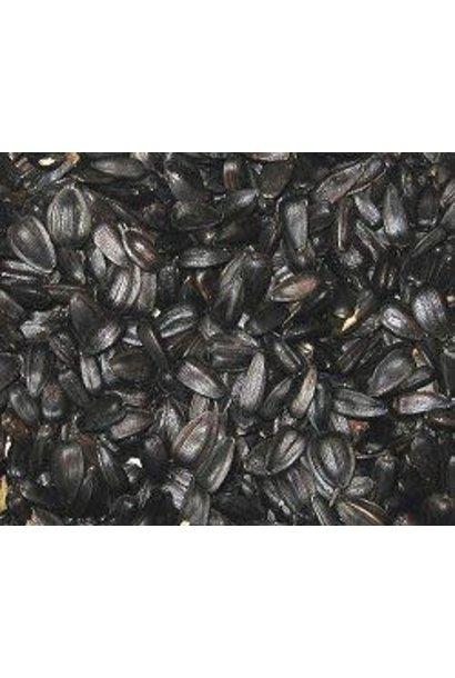 Regular Quality Black Oil Sunflower 40lbs