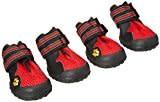AFP All Road Dog Boots, Orange, Size 1-1