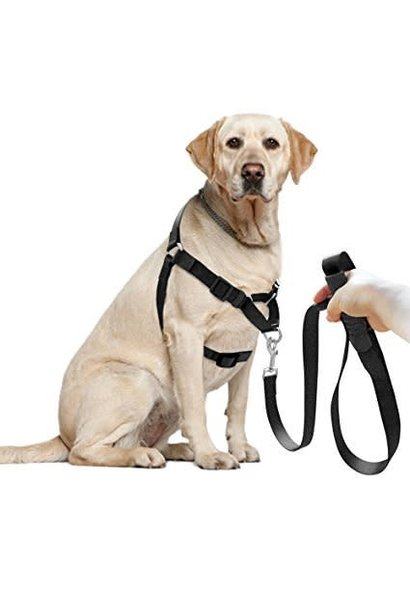 Large Adjustable Nylon S.N.A.P. Front Lead Training Harness