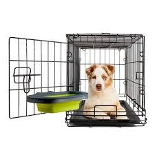Dexas Kennel Cup - Small Green-2