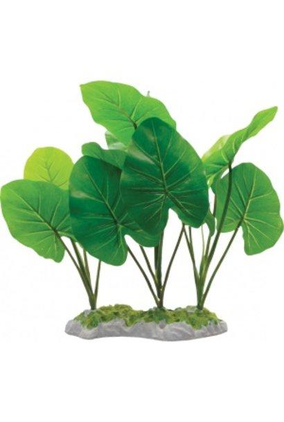 Fluval Chinodorus Plant 11.5