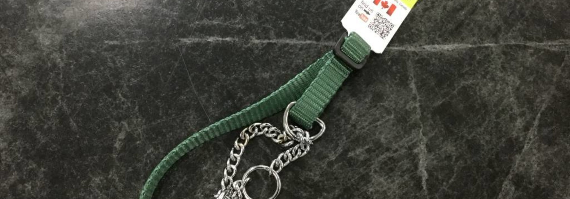 "1/2"" Wide  Martingale Style Nylon Dog Collar with Chain Green Adjusts to 14"""