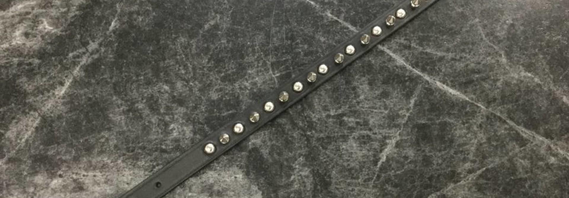 "Spike Collar Black 16"" x 5/8"""