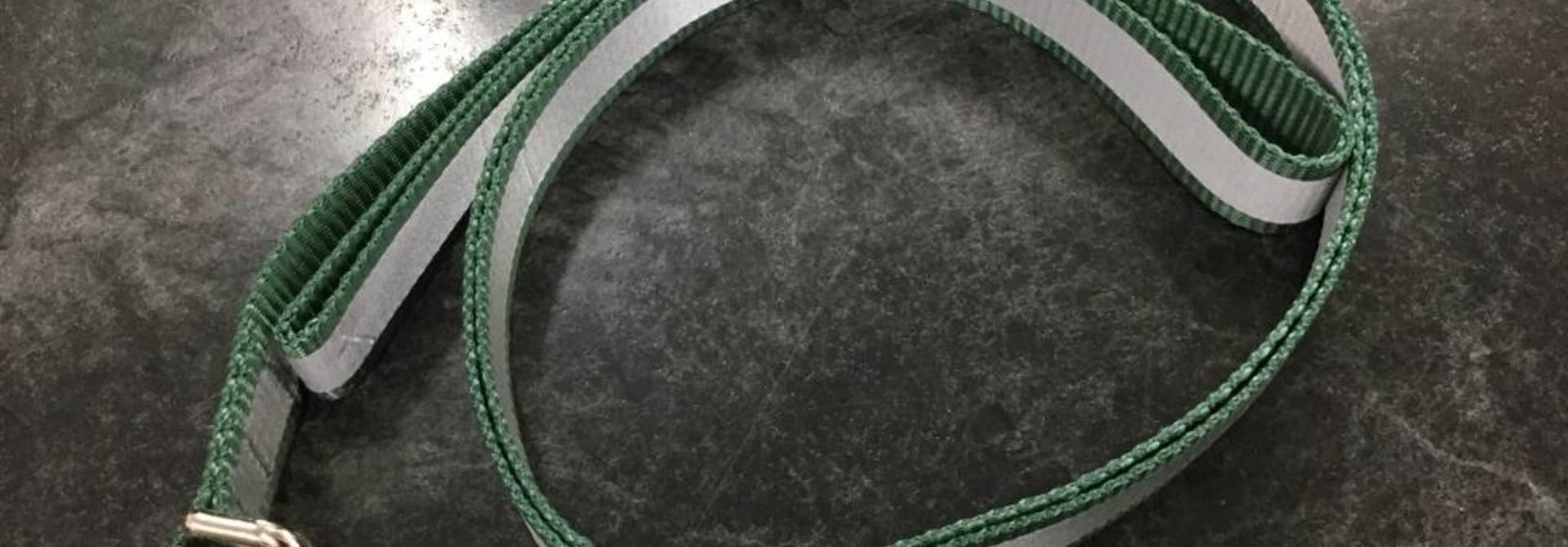 "1"" Wide x 6 Feet Long Reflective Nylon Dog Leash Green"
