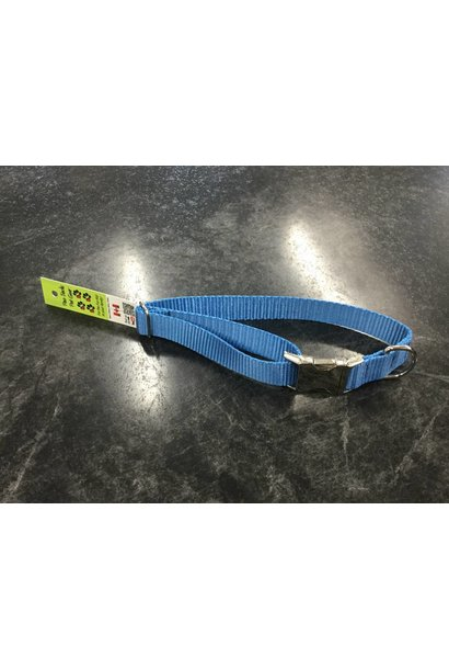 "1"" Mighty Metal Dog Collar (14""-22"")- Royal Blue"