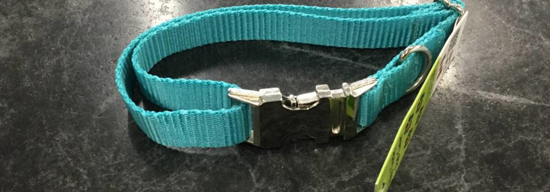 """3/4"""" Adjustable Dog Collar with Mighty Metal Buckle  Teal 14-20"""""""
