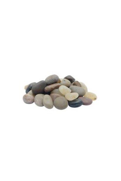 Marina Decorative Natural Gravel, Beach Pebble, 10 kg