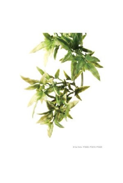 Exo Terra Jungle Plant - Croton - Medium