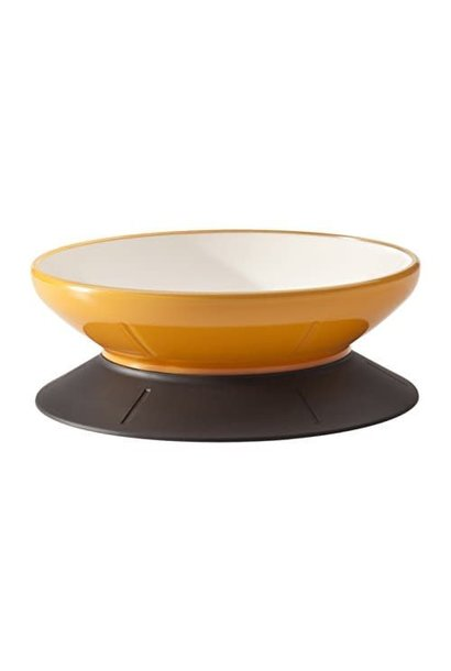Mango Tango Dog Bowl holds 4 Cups