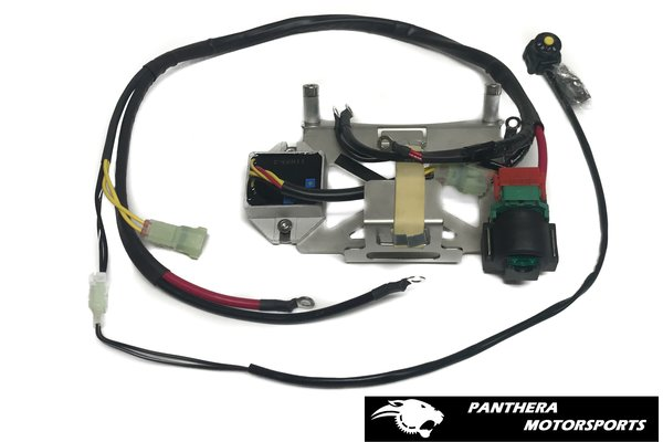 YZ250 battery box assembly- 8 cells (With regulator)