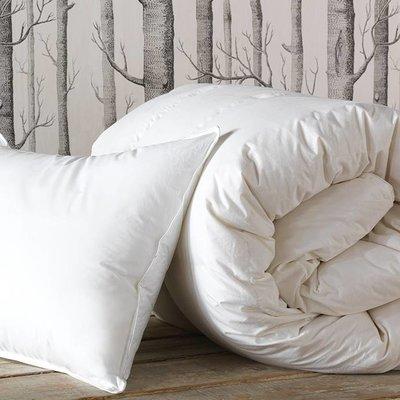 Eastern Accents Loure Pillow MEdium King 21*37