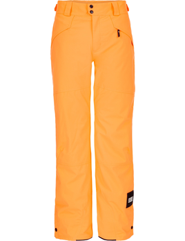 O'NEILL O'NEILL M'S HAMMER INSULATED PANT