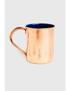 UNITED BY BLUE UNITED BY BLUE EVERGREEN 14OZ COPPER ENAMEL LINED MUG