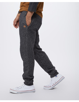 TENTREE TenTree Men's Atlas Sweatpant