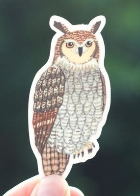 Cactus Club Sticker Owl