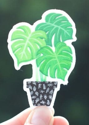 Cactus Club Sticker Monstera