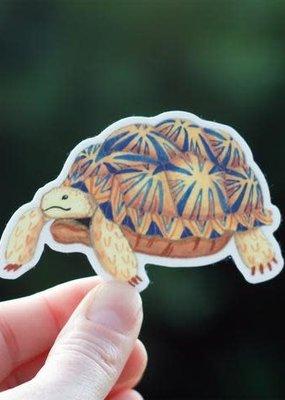 Cactus Club Sticker Tortoise