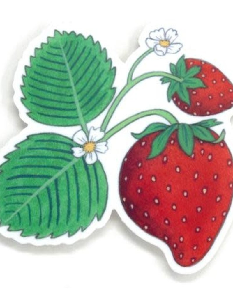 Cactus Club Sticker Wild Strawberry