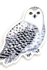Cactus Club Sticker Snowy Owl