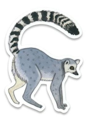 Cactus Club Sticker Lemur