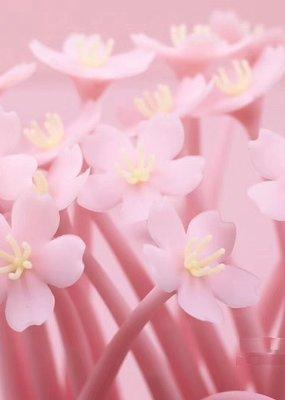 Sakura Gel Pen