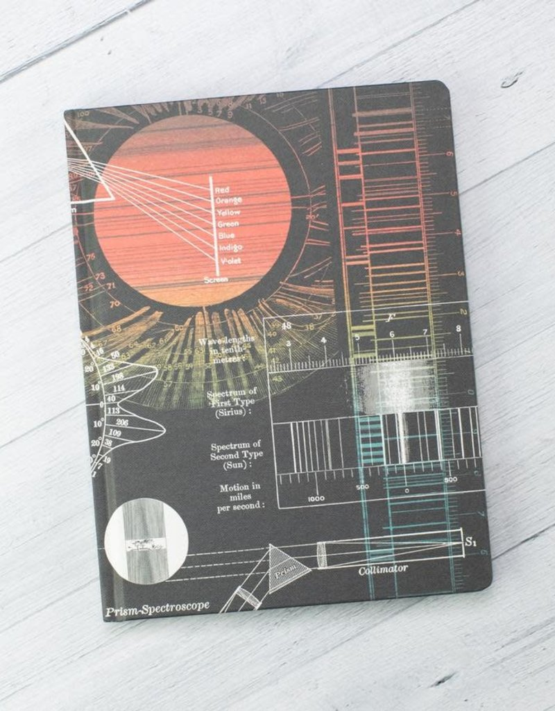 Cognitive Surplus Hypothesis Hardcover