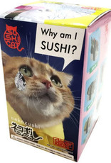 Clever Idiots Blind Box Sushi Cat 1