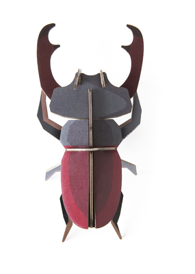 Studio Roof Wall Decoration Kit Stag Beetle