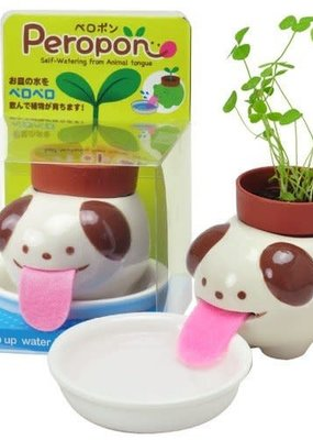 noted Peropon Planter