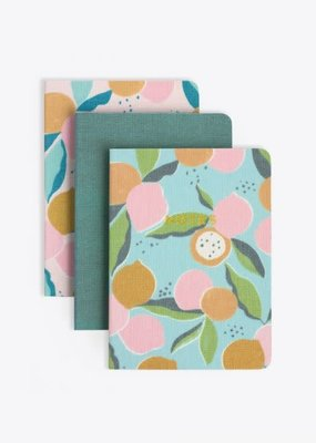 Elum Journal 3-Pack Fruit and Greens Lined