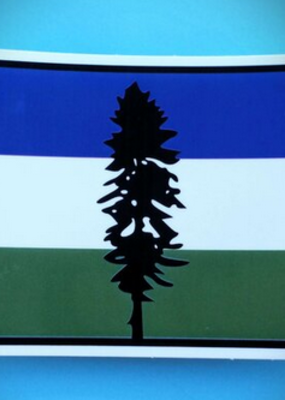 Toketee Sticker Cascadia Flag