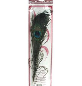 "Zucker Zucker Feather Peacock Eyes 9-12"" 2pc"