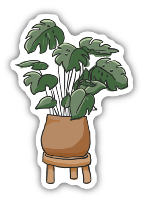 Stickers NW Sticker Monstera Deliciosa