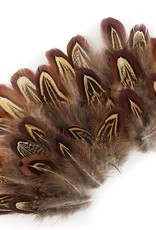 Zucker Feather Pheasant Plumage Almond