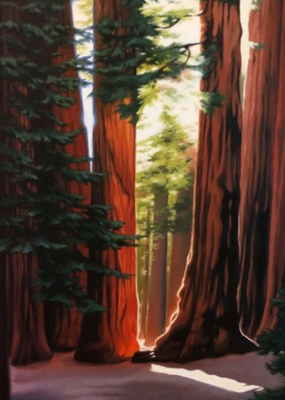 Artists to Watch Card Sequoias