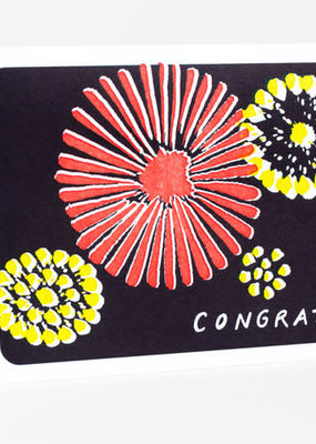 Power and Light Press Card Congrats Fireworks