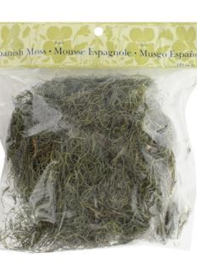 Panacea Panacea Spanish Moss Pkg Basil 4oz
