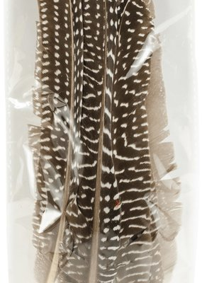 Midwest Design Feathers Guinea Fowl Quill 7 Inch 10 Piece Pack