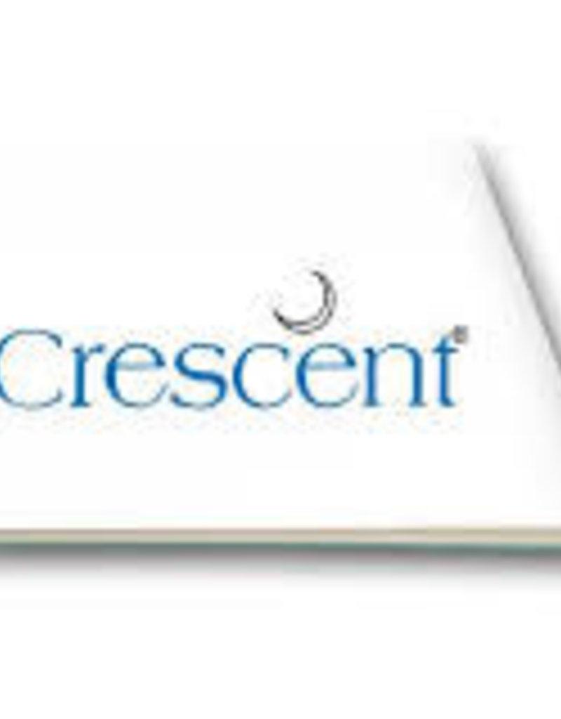 Crescent Hot-Press Illustration Board #210 20 x 30