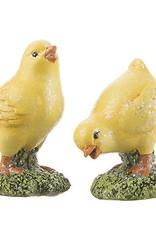 Darice Chicks on Grass