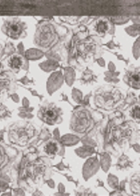 Kaiser Craft 12 X 12 Paper Sombre Bot Rosabella