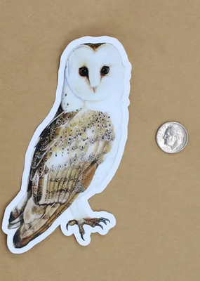 Amy Rose Moore Illustration Sticker Barn Owl