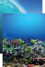 Reminisce 12 x 12 Paper Underwater